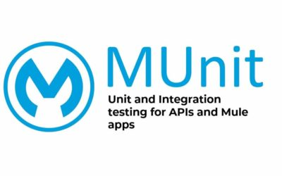 MUnit: Mule application unit testing best practices